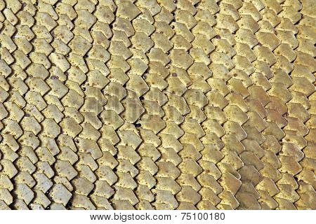 Golden scales armour (Roman soldier)