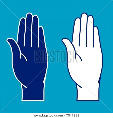 Illustration of palms on blue background.