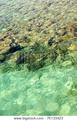 Red Sea Surface