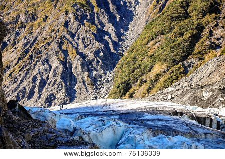 Glacier In Westland National Park On The South Island Of New Zealand.