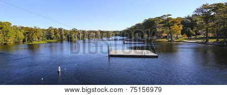 Wakulla Springs In The Fall