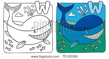 Little whale coloring book. Alphabet W
