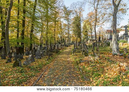 Road In Old Cemetery
