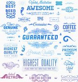 Set of Retro Vintage Insignias and Logotypes. Business Signs, Logos, Identity Elements, Labels, Badges, Frames, Borders and Floral Design Elements. Modern Colors Version  poster
