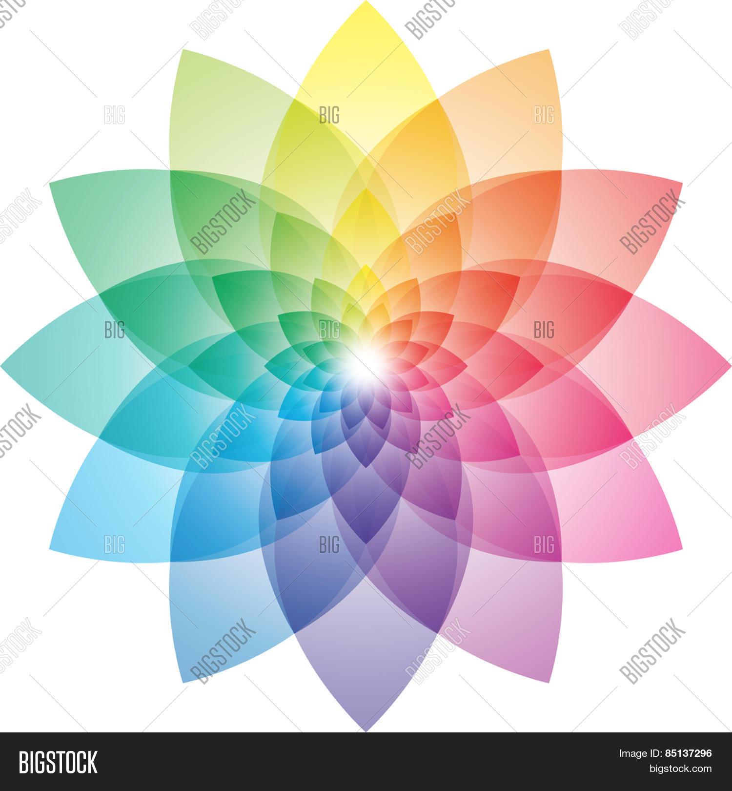 Beautiful Lotus Vector Photo Free Trial Bigstock