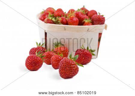 Box of Northeastern American grown strawberries.  The strawberry variety is Jewel.