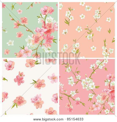 Set of Spring Blossom Flowers Background - Seamless Floral Shabby Chic Patterns - in vector