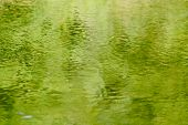 green water reflections poster
