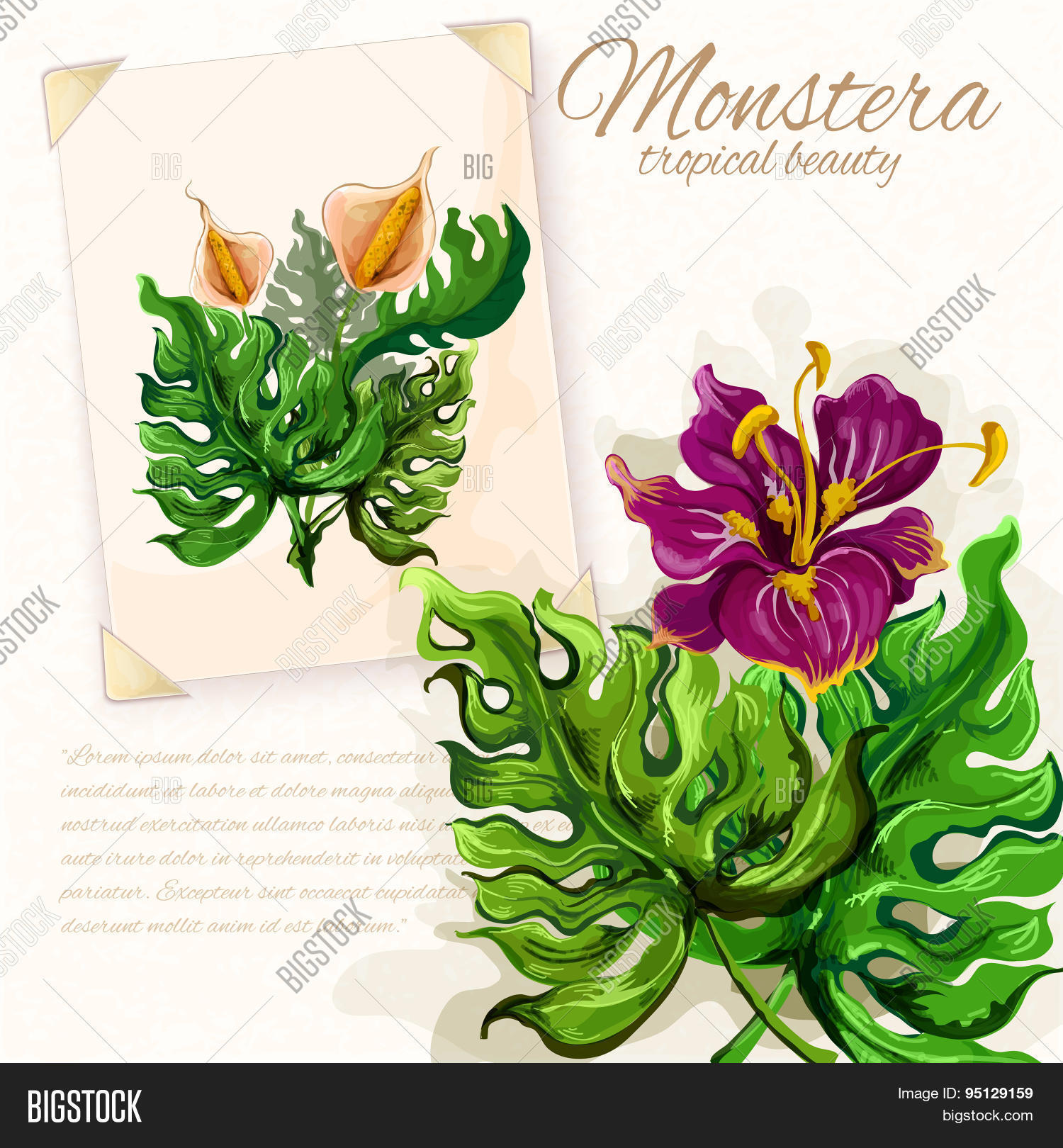 Monstera Leaves Vector Photo Free Trial Bigstock