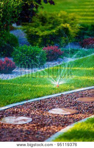 Backyard Garden Watering