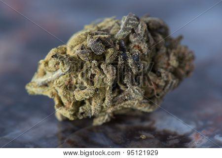 Bordello Medicinal Medical Marijuana