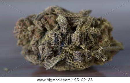 Close up of Bordello Medical Marijuana