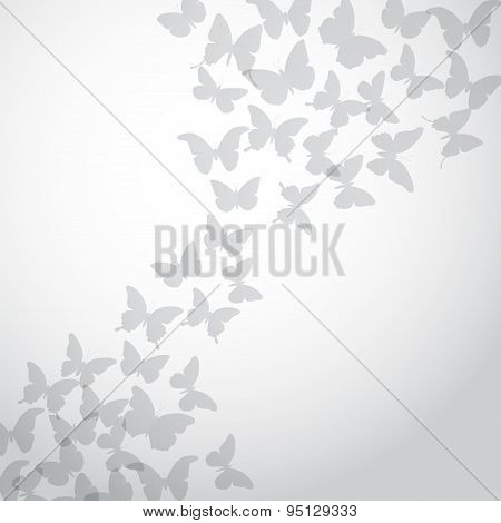 Abstract Gray Butterfly Background On White Background. Vector