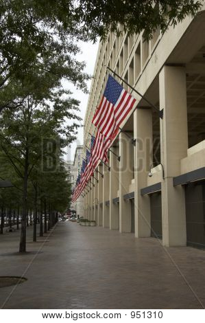 Fbi With Flags