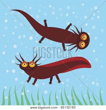 Cute Brown Axolotl Cartoon Character On Blue Background In The Aquarium (eastern Tiger Salamander) A