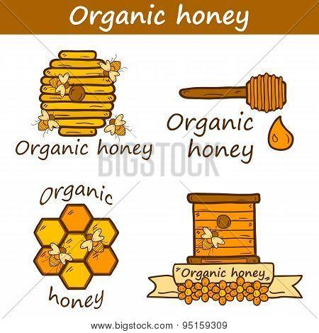 Set of cute cartoon hand drawn templates on beekeeping theme: bee, honey, flowers, bee hat, bee spoo