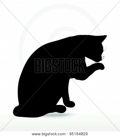 Vector Image - Cat Silhouette In Cleaning Paw Pose