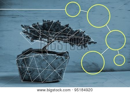 Bonsai Tree Polygonal Slide