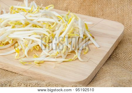 Mung Beans Or Bean Sprouts