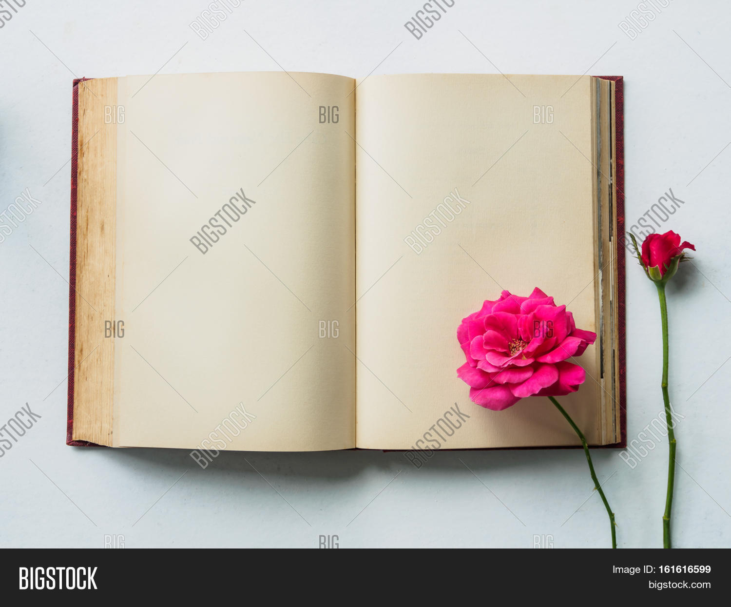 Love Story Concept Image Photo Free Trial Bigstock Vintage Flower Shabby Rose 1 Flat Lay Of Blank Old Book Open With Pink On White