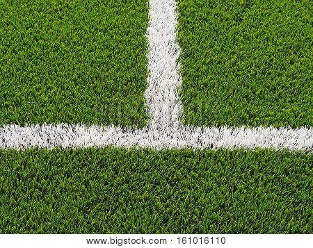 Artificial grass, limit lines of a sports grass field