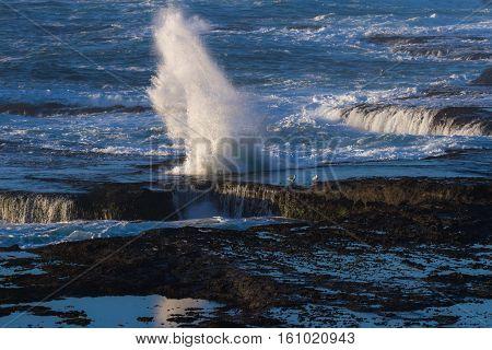 Waves Crashing On The Lava Rock Bluffs