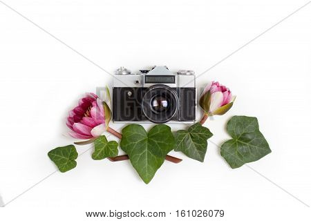 Vintage retro photo camera dogwood green leaves (cornus alba) and nymphaea waterlily purple flowers on white background. flat lay top view.