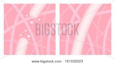 pink close up collagen vector , elastine