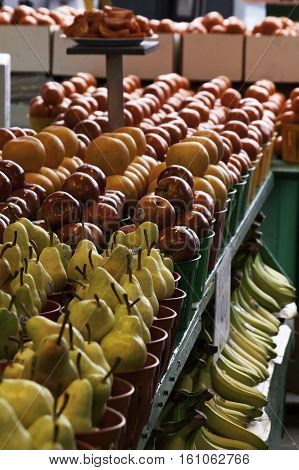Pears, apples, oranges and bananas in a row on a display table at the outdoor/indoor Jean-Talon Market in Montreal, Quebec, on a bright day in September.