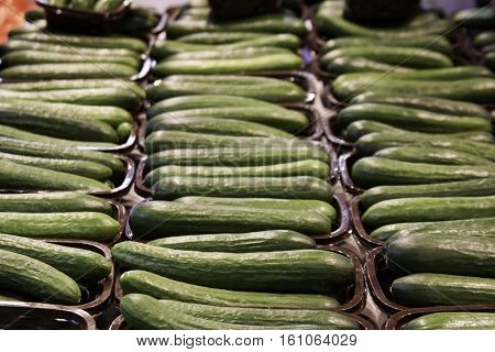 Small green cucumbers all in rows at the outdoor/indoor Jean-Talon Market in Montreal, Quebec, on a bright day in September.