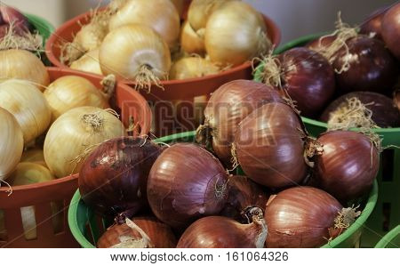 Close up of yellow and red onions in small baskets at the outdoor/indoor Jean-Talon Market in Montreal, Quebec, on a bright day in September.