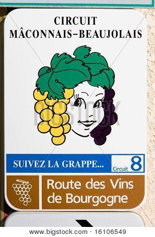 wine route of Cote Maconnais - Beaujolais region, Burgundy, France