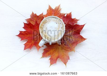 flat layout with a frothy cappuccino in a white cup with Cushions maple leaves top view / autumn coffee break