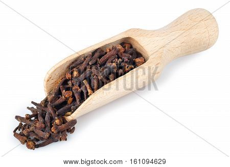 Wooden shovel with dried cloves isolated on white background. Aromatic seasoning. Scoop with cloves scattered from it
