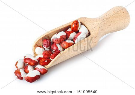 uncooked kidney beans on wooden scoop isolated on white background. Pinto beans