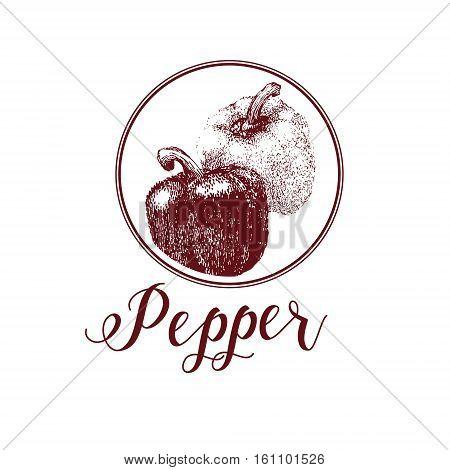 Hand drawn logo of pepper. Bell sweet pepper .Vintage market fresh vegetables isolated on white background.