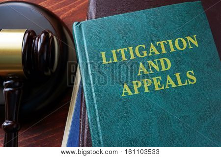 Litigation and appeals title on a book and gavel.