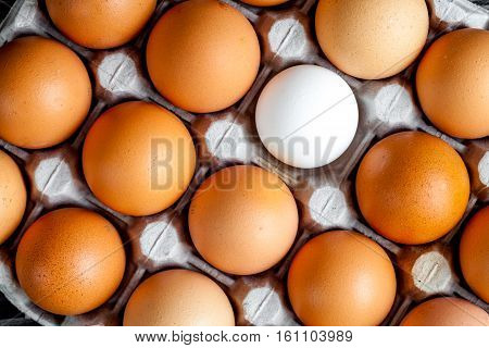 concept of correct choice eggs on dark wooden background top view