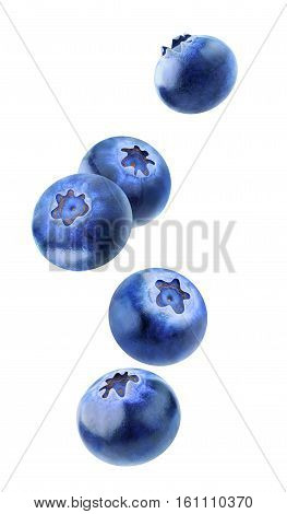 Isolated Blueberries Flying In The Air