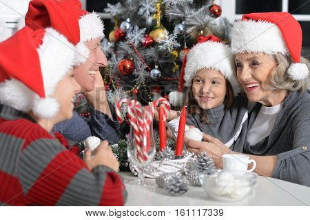 Portrait of  grandparents with grandchildren celebrating Christmas together
