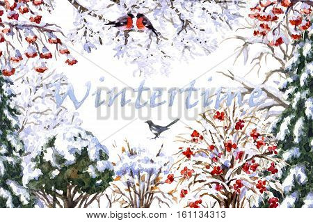 Hand drawn watercolor illustration. Set of various winter trees and bush. Evergreen and deciduous snow covered plants and birds. Wintertime inscription.