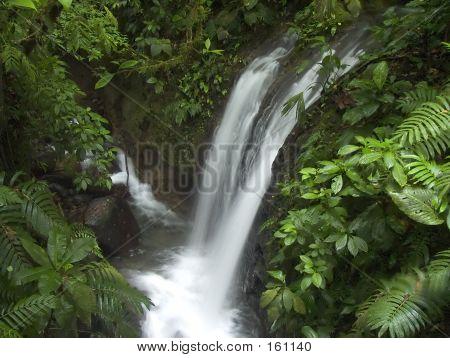 Ein Wasserfall im Dschungel