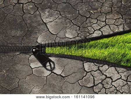 environmentally friendly concept : change the arid soil to the green plant