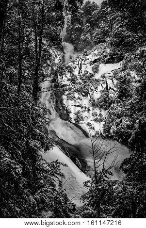 Waterfall And Snow