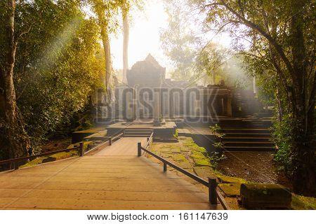 Ancient Ta Prohm Temple in the morning sun rays, Angkor, Cambodia. Ruin
