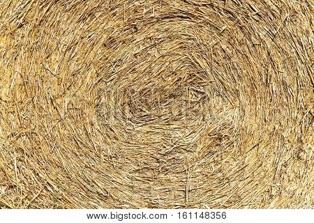 Straw background: straw made with a circular pattern