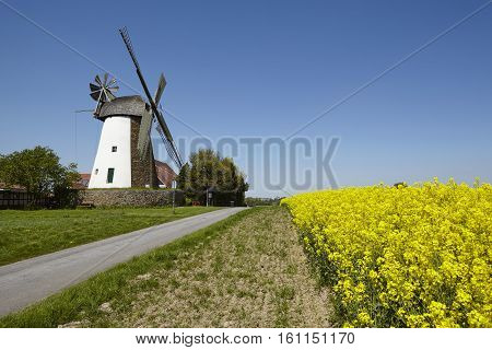 Windmill Eickhorst (hille)