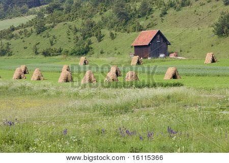 Strazovske Vrchy, Slovakia