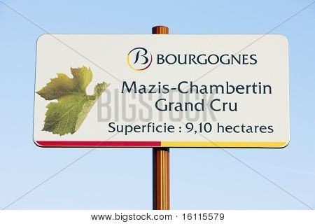 grand cru vineyard of Mazis-Chambertin, Cote de Nuits, Burgundy, France