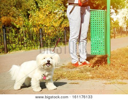 Woman walking with dog and throwing poo in container